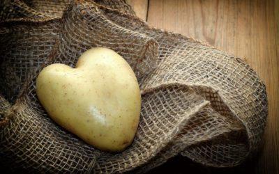 5 Fakten über Kartoffeln